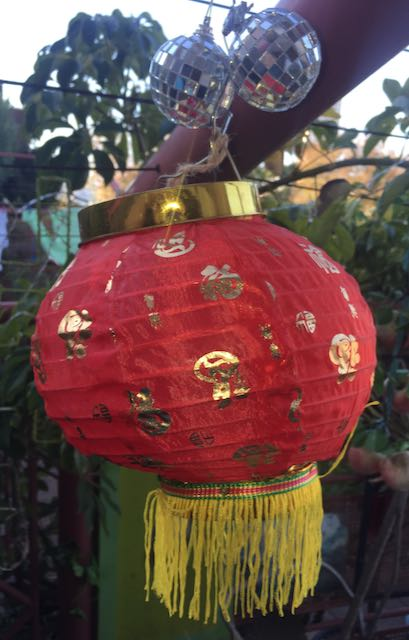 Lance Leopard's disco Chinese lantern in his rooftop garden